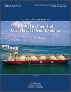 Brookings Nat Gas Report